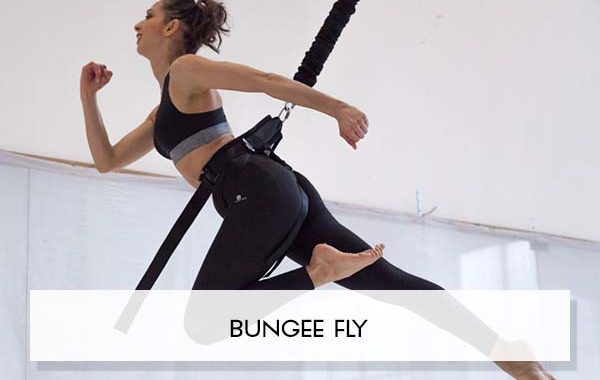 BUNGEE FLY